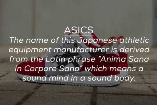 "Text - ASICS The name of this Japanese athletic equipment manufacturer is derived from the Latin phrase ""Anima Sana In Corpore Sano"" which means a sound mind in a sound body."