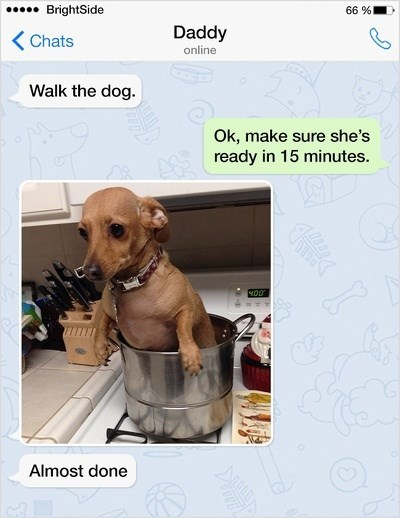 Dog - BrightSide 66 % Daddy KChats online Walk the dog. Ok, make sure she's ready in 15 minutes Almost done