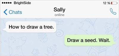 Text - BrightSide 12 % Sally Chats online How to draw a tree. Draw a seed. Wait.