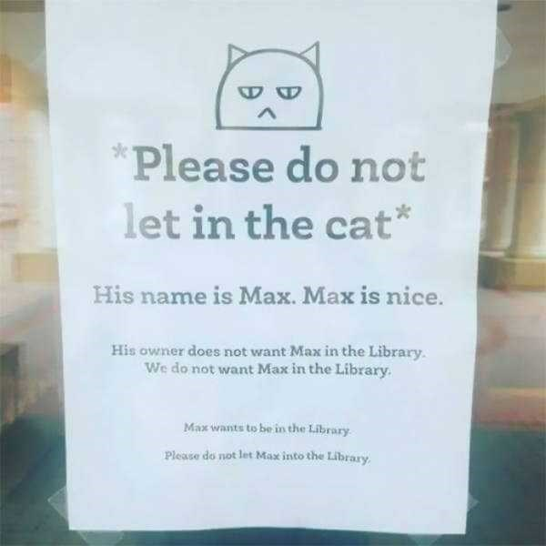 librarian meme - Text - Please do not let in the cat His name is Max. Max is nice. His owner does not want Max in the Library. We do not want Max in the Library. Max wants to be in the Library Please do not let Max into the Library