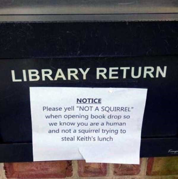 "librarian meme - Text - LIBRARY RETURN NOTICE Please yell ""NOT A SQUIRREL when opening book drop so we know you are a human and not a squirrel trying to steal Keith's lunch"