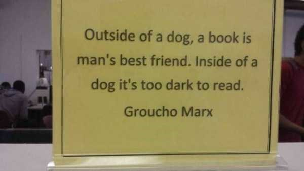 librarian meme - Text - Outside of a dog, a book is man's best friend. Inside of a dog it's too dark to read. Groucho Marx