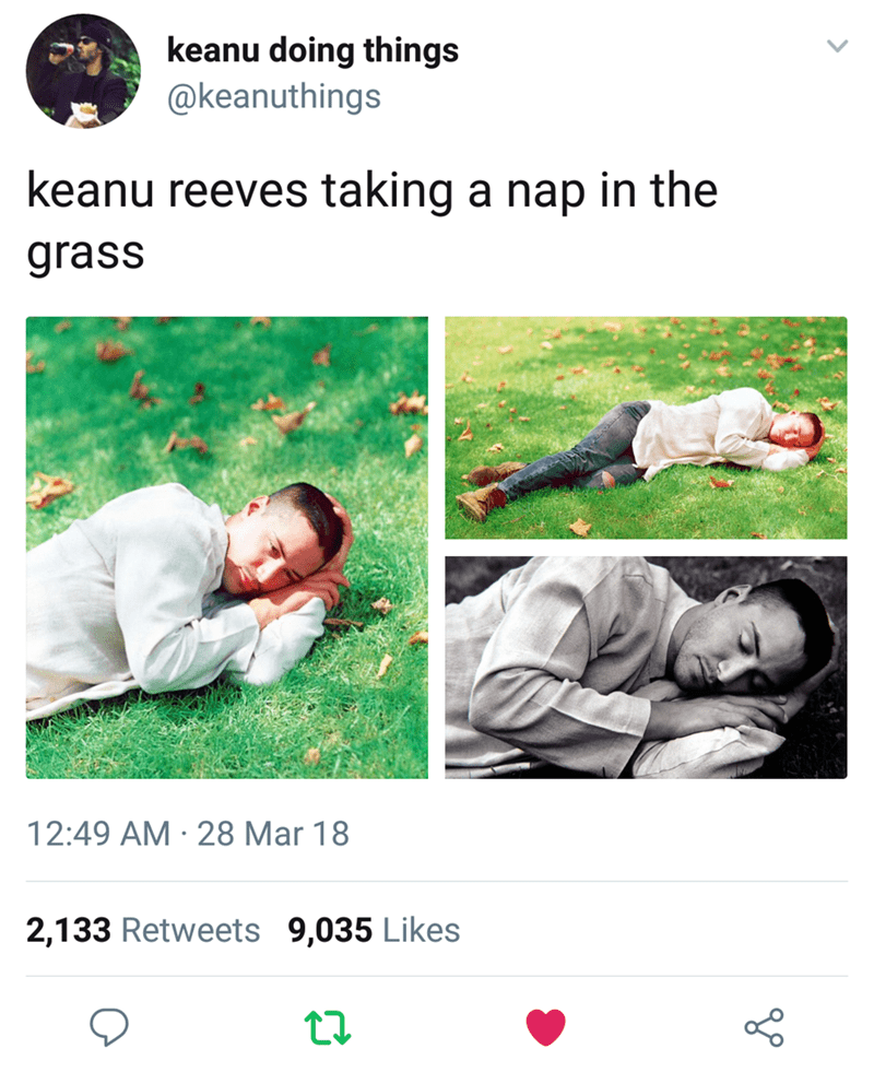 Keanu Reeves - Text - keanu doing things @keanuthings keanu reeves taking a nap in the grass 12:49 AM 28 Mar 18 2,133 Retweets 9,035 Likes