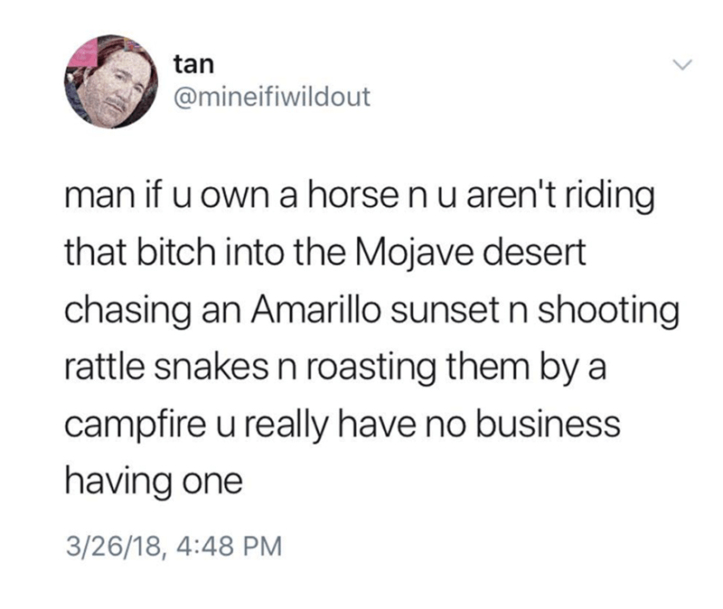 Text - tan @mineifiwildout man if u own a horse n u aren't riding that bitch into the Mojave desert chasing an Amarillo sunset n shooting rattle snakes n roasting them by a campfire u really have no business having one 3/26/18, 4:48 PM