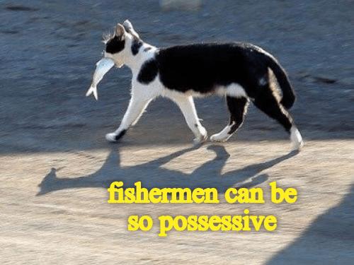 meme - Mammal - fishermen can be so possessive