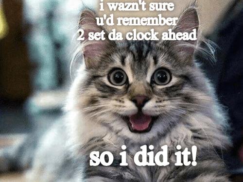 meme - Cat - i wazn't sure u'd remember 2 set da clock ahead so i did it!