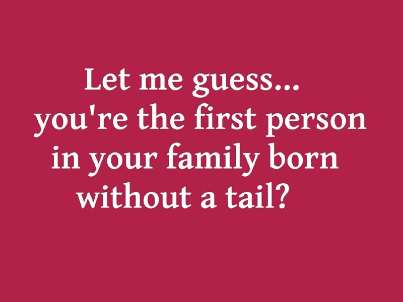 Text - Let me guess... you're the first person in your family born without a tail?