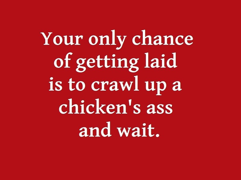 Text - Your only chance of getting laid is to crawl up a chicken's ass and wait.