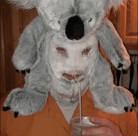 person with koala doll on their head drinking something with s straw