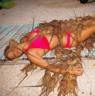 woman in bikini laying on sand with lobsters all over her