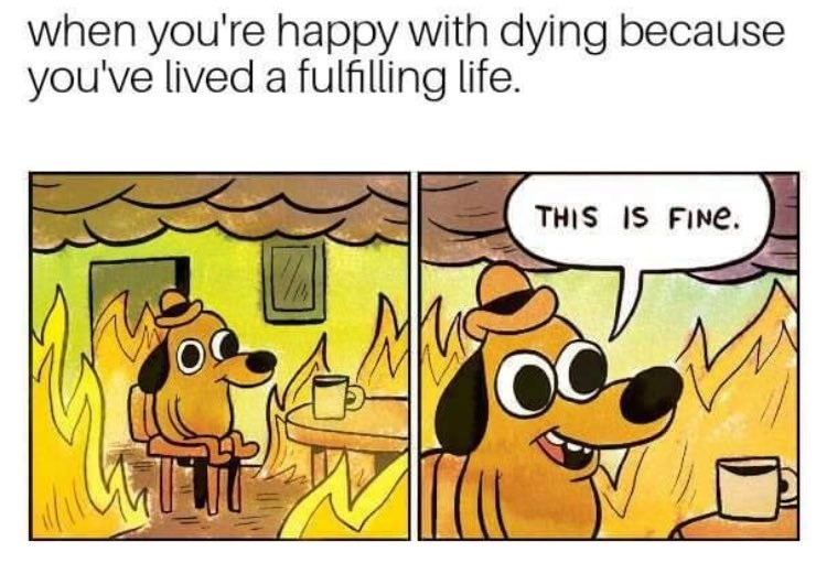 Cartoon - when you're happy with dying because you've lived a fulfilling life. THIS IS FINE