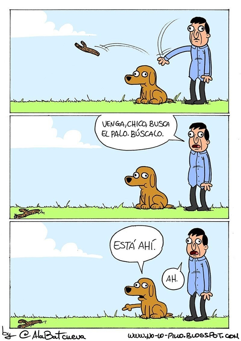 cuando le mandas un palo a un perro y este no va