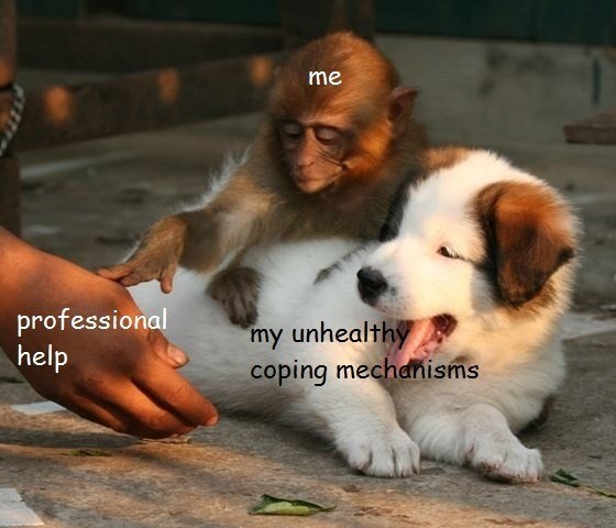 Funny meme about depression and coping mechanisms.