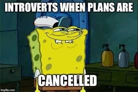 Cartoon - INTROVERTS WHEN PLANS ARE CANCELLED ingip.com