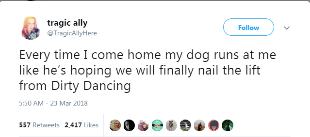 Text - tragic ally Follow @TragicAllyHere Every time I come home my dog runs at me like he's hoping we will finally nail the lift from Dirty Dancing 5:50 AM 23 Mar 2018 - 557 Retweets 2,417 Likes