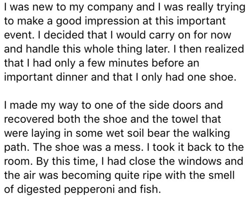 Text - I was new to my company and I was really trying to make a good impression at this important event. I decided that I would carry on for now and handle this whole thing later. I then realized that I had only a few minutes before an important dinner and that I only had one shoe. I made my way to one of the side doors and recovered both the shoe and the towel that were laying in some wet soil bear the walking path. The shoe was a mess. I took it back to the room. By this time, I had close the
