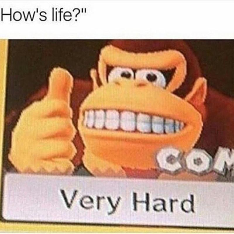 Funny meme about donkey kong.