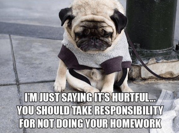 Dog - I'M JUST SAYING ITSHURTFUL. YOU SHOULD TAKE RESPONSIBILITY FOR NOT DOING YOUR HOMEWORK