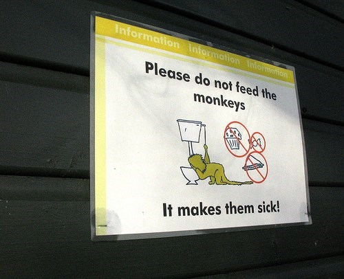 Text - Information Information 1Information Please do not feed the monkeys It makes them sick!
