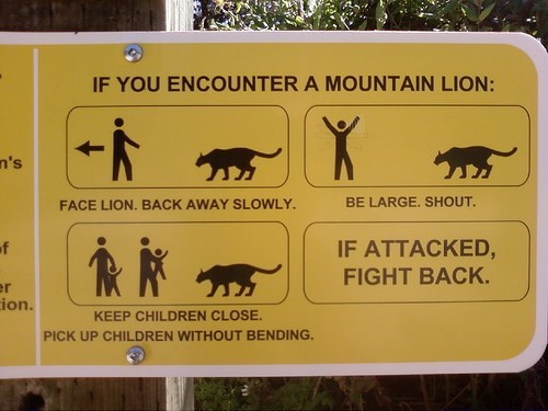 Signage - IF YOU ENCOUNTER A MOUNTAIN LION: X n's BE LARGE. SHOUT FACE LION. BACK AWAY SLOWLY. IF ATTACKED, of FIGHT BACK. r ion. KEEP CHILDREN CLOSE. PICK UP CHILDREN WITHOUT BENDING.