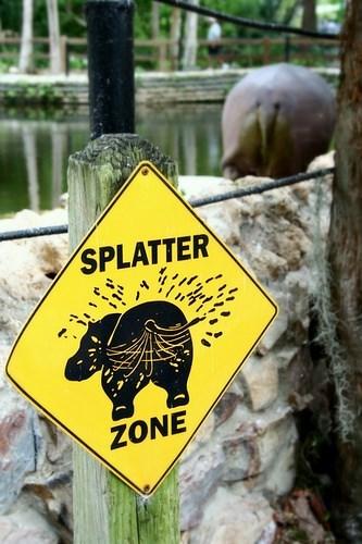 Sign - SPLATTER ZONE