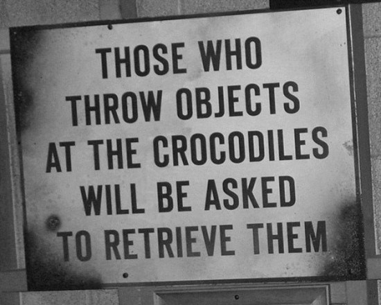 Text - THOSE WHO THROW OBJECTS AT THE CROCODILES WILL BE ASKED TO RETRIEVE THEM