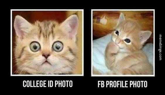 memes - Cat - COLLEGE ID PHOTO FB PROFILE PHOTO memebinge.com