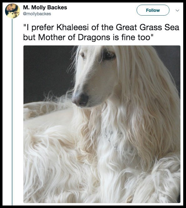 "Mammal - M. Molly Backes @mollybackes Follow ""I prefer Khaleesi of the Great Grass Sea but Mother of Dragons is fine too"""