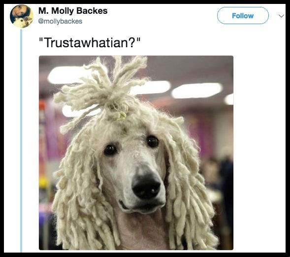 "Dog - M. Molly Backes Follow @mollybackes ""Trustawhatian?"""