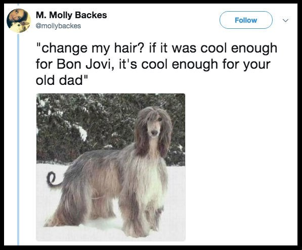 "Dog - M. Molly Backes @mollybackes Follow ""change my hair? if it was cool enough for Bon Jovi, it's cool enough for your old dad"""