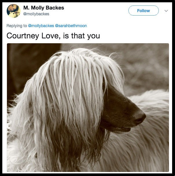 Dog - M. Molly Backes Follow @mollybackes Replying to @mollybackes @sarahbethmoon Courtney Love, is that you