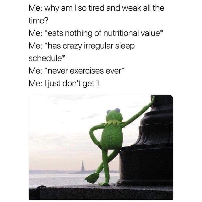Text - Me: why am I so tired and weak all the time? Me: *eats nothing of nutritional value* Me: *has crazy irregular sleep schedule* Me: *never exercises ever* Me: Ijust don't get it