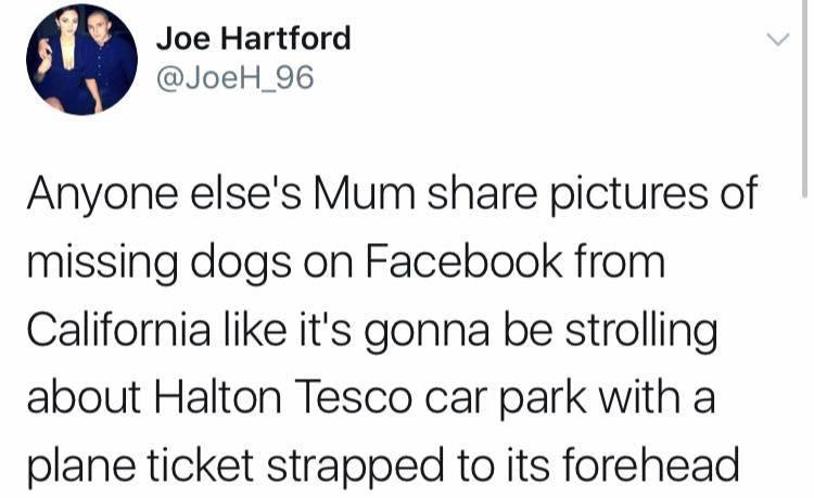 sunday meme about mum's facebook activity