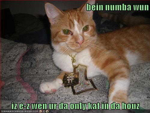 Cheezburger Image 9148346368