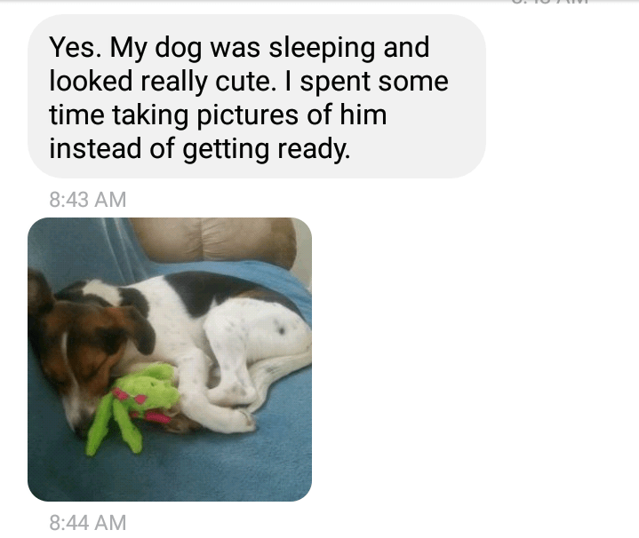 Text - Yes. My dog was sleeping and looked really cute. I spent some time taking pictures of him instead of getting ready. 8:43 AM 8:44 AM
