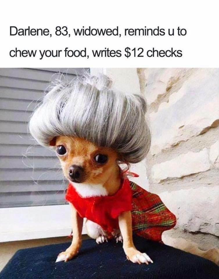 Cheezburger Image 9148441600