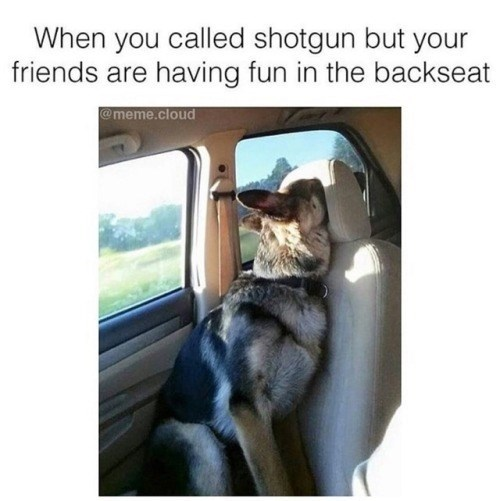 Photo caption - When you called shotgun but your friends are having fun in the backseat @meme.cloud