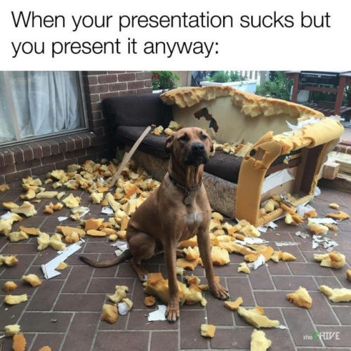 Dog - When your presentation sucks but you present it anyway: she HIVE