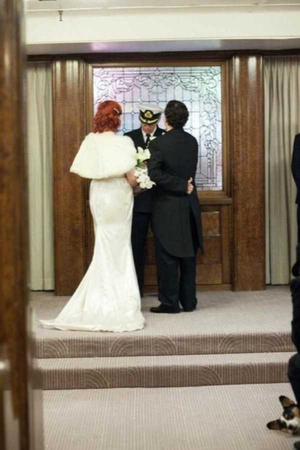 animal photobombs - Wedding dress
