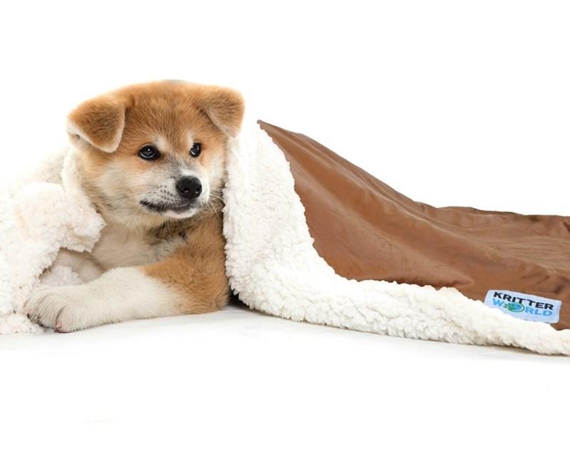 Dog - KRITTER W RLD