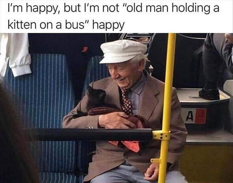 "animal meme - Musical instrument - I'm happy, but I'm not ""old man holding a kitten on a bus"" happy A"