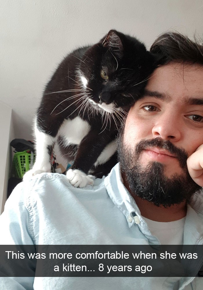 Facial hair - This was more comfortable when she was a kitten... 8 years ago