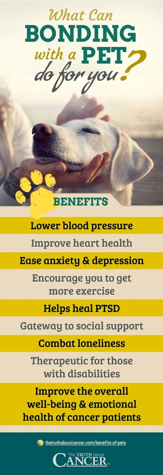 Dog breed - What Can BONDING with a PET? de for you BENEFITS Lower blood pressure Improve heart health Ease anxiety & depression Encourage you to get more exercise Helps heal PTSD Gateway to social support Combat loneliness Therapeutic for those with disabilities Improve the overall well-being & emotional health of cancer patients thetruthaboutcancer.com/benefits-of-pets CANCER The TRUTH About