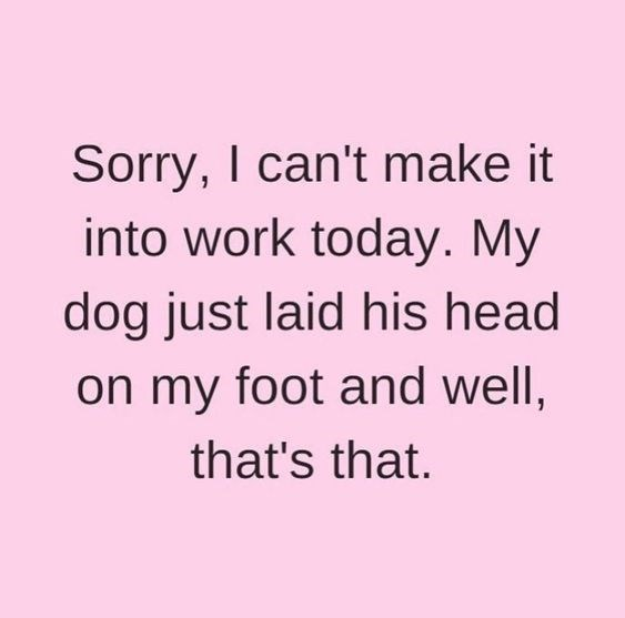 Text - Sorry, I can't make it into work today. My dog just laid his head on my foot and well, that's that.