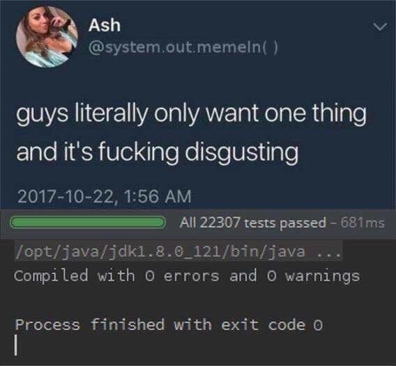 Text - Ash @system.out.memeln( ) guys literally only want one thing and it's fucking disgusting 2017-10-22, 1:56 AM All 22307 tests passed 681ms /opt/java/jdkl.8.0 121/bin/java Compiled with o errors and O warnings Process finished with exit code 0