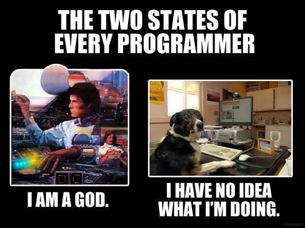 Photo caption - THE TWO STATES OF EVERY PROGRAMMER I HAVE NO IDEA WHAT I'M DOING. IAM A GOD.