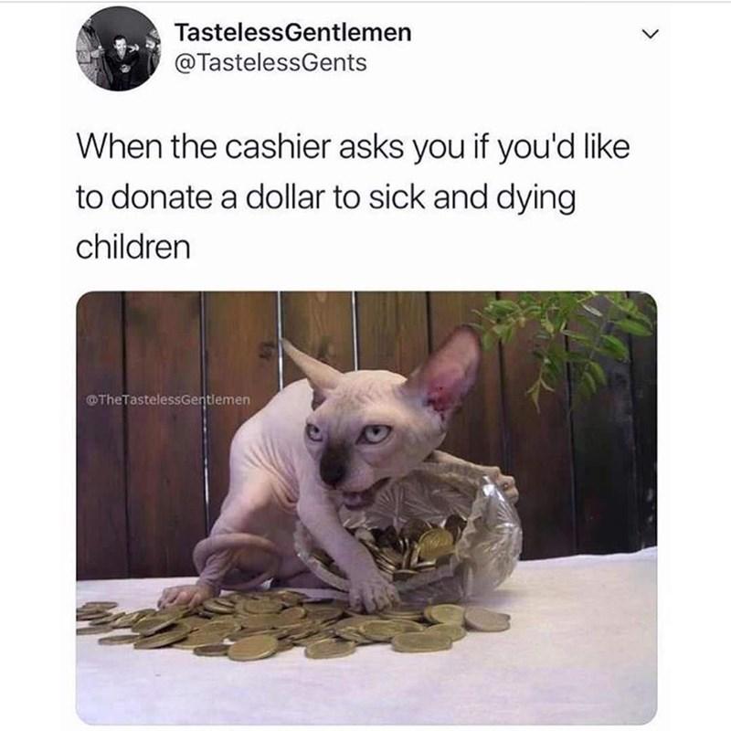 Mammal - TastelessGentlemen @TastelessGents When the cashier asks you if you'd like to donate a dollar to sick and dying children OTheTastelessGentlemen