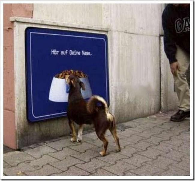 Goats - Hor auf Deine Nese