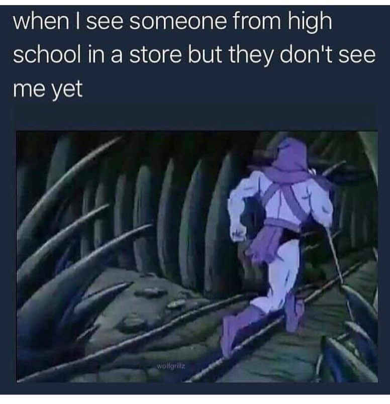 Funny meme about skeletor, seeing people from high school