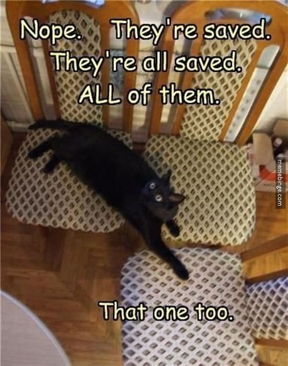 Room - Nope They're saved. They 're all saved ALL of them That one too memebinge.com